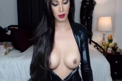 amazing Trap tranny webcam Shemaleheaven.co.uk