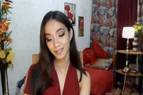 oriental Ladyboy Jerking Her penis On web camera